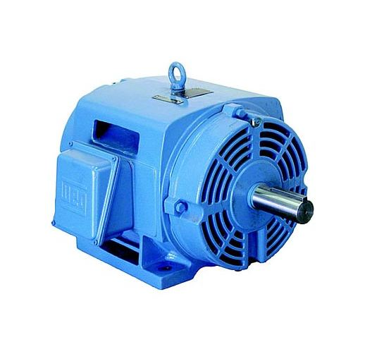 Weg Pump Motors For Electric Motors Catalog